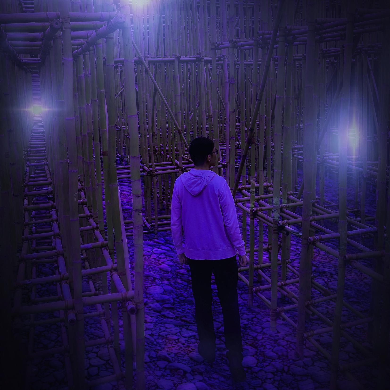 Bamboo Wisps Digital Art by Alvin Sim