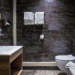 Inter Hotel Le Bristol, Strasbourg Room Toilet